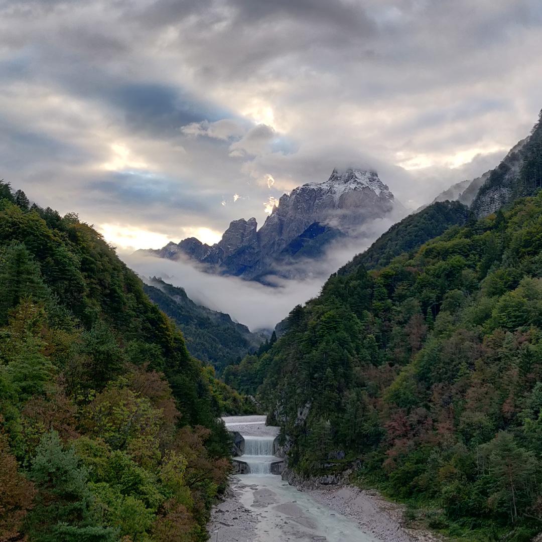 Viennedig © Maolinn